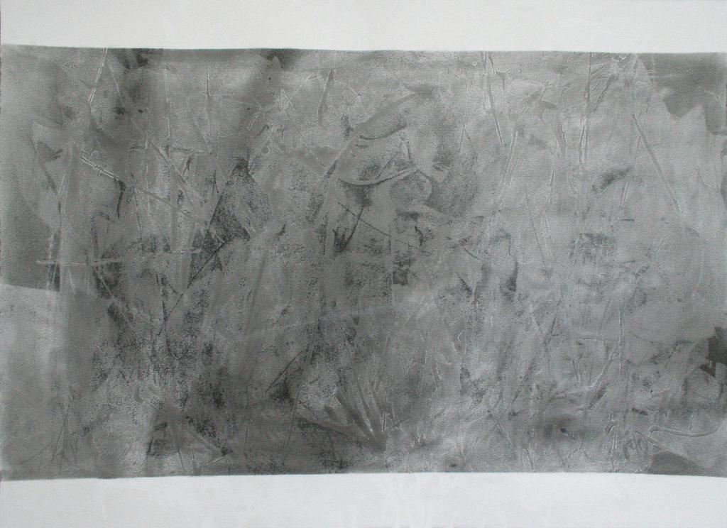 peau-III-XIV-encre-pastel-fusain-graphite-papier-BFK-rives-56x76cm-2014.jpg