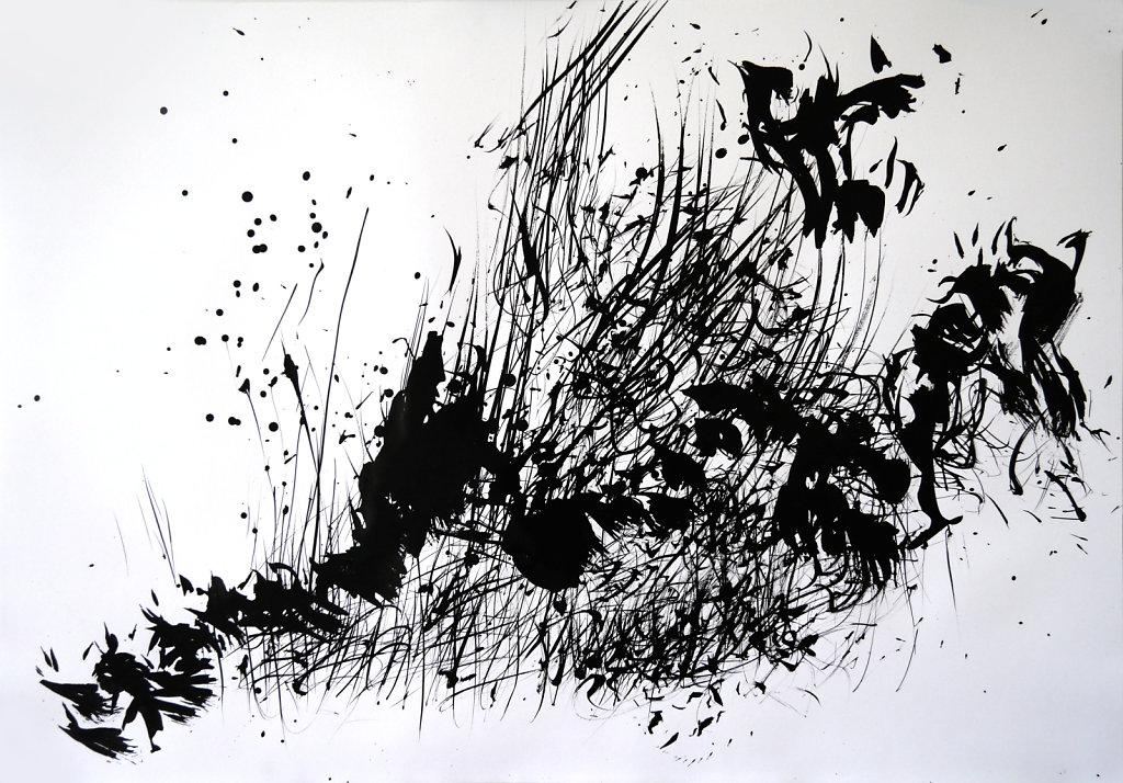 Flys 1, 2014